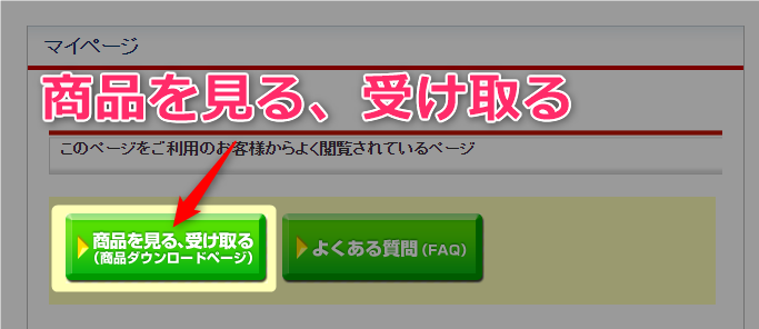 【AFFINGER6特典付】アップデート失敗w導入前に『必読』してね 02 インフォトップでアフィンガー5の注文IDを確認